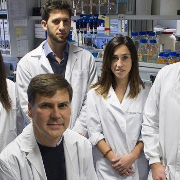 Proyecto de Investigación en el area de Biomedicina