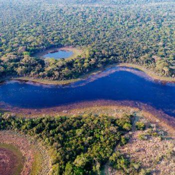 PremiosBIOCON-Vista-aérea-de-un-bosque-subtropical-de-Paraguay_427x570