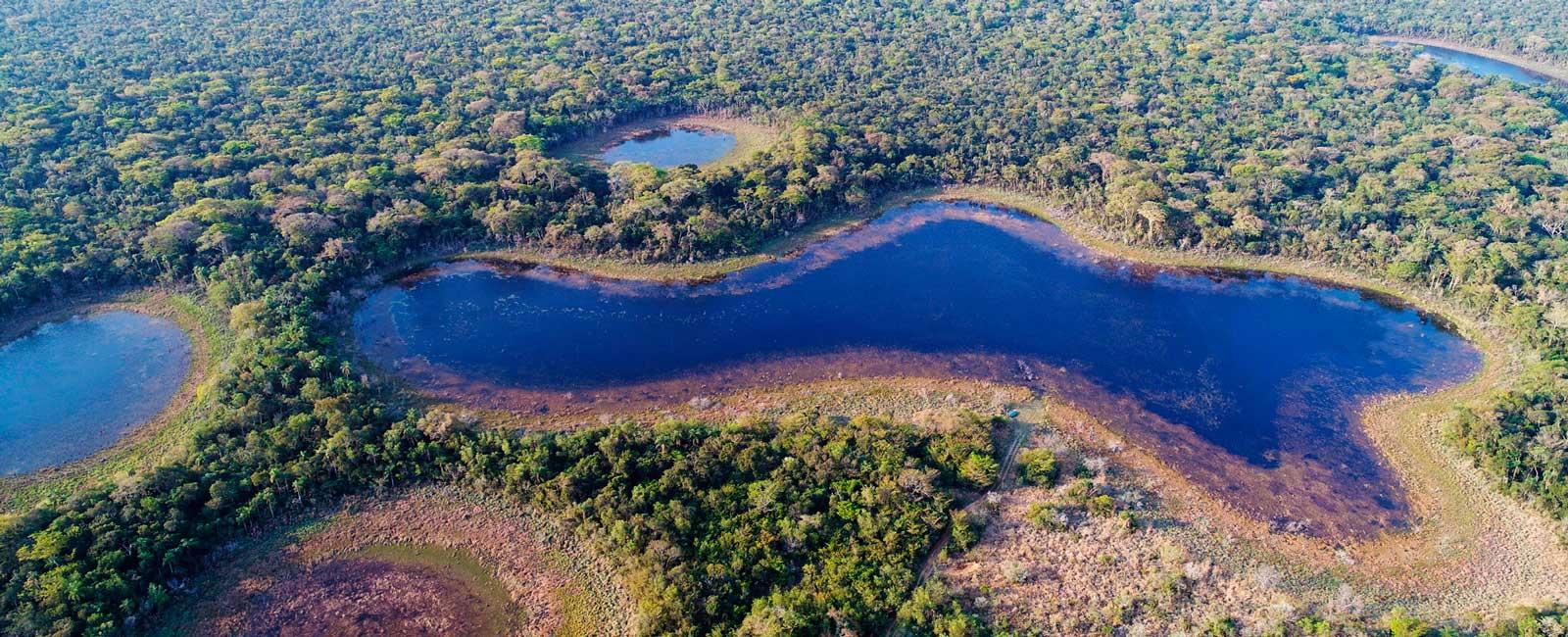 Vista-aérea-de-un-bosque-subtropical-de-Paraguay-1600×650